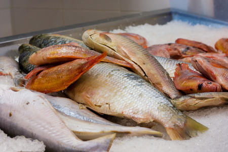 fishy: fish on a shops counter Stock Photo