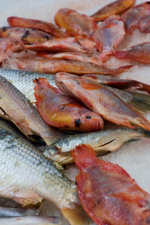 fishy: fishmongers.