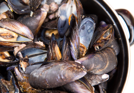 mussle: mussels Stock Photo