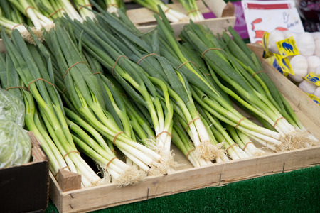 a crate of spring onions at a market. photo