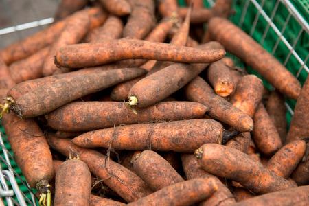 fresh carrots photo