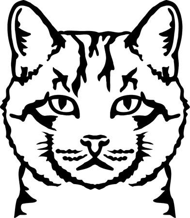 ko: Cat Head