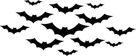 swarm: Bats in swarm