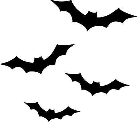 bat animal: Bats flying