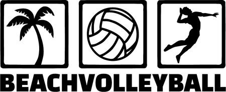 Beach Volleyball Icons Ilustracja
