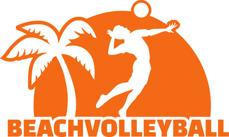 volleyball player: Beach Volleyball Player with Palm