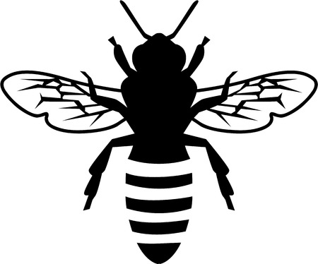 Real Silhouette of a bee