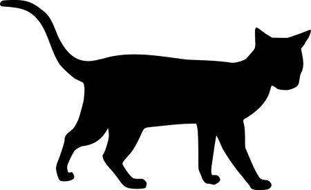 silueta gato: Silueta de gato