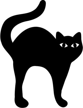 hump: Black Cat with hump