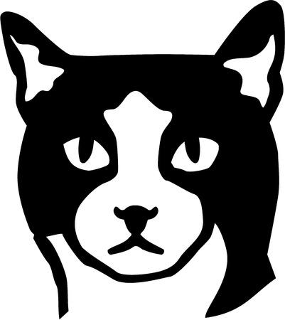 cat head: Cat head
