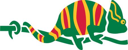 chameleon: Colorfull Chameleon Illustration