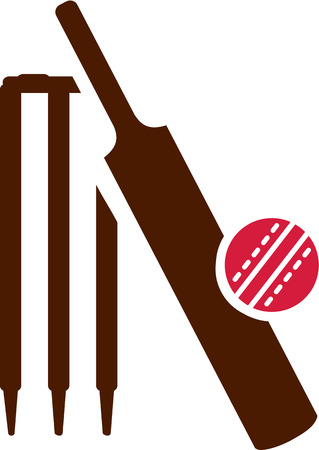 cricketer: Cricket Equipment Icon