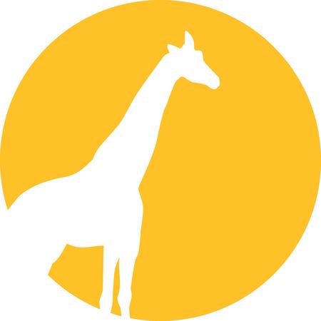 giraffe: Giraffe moon
