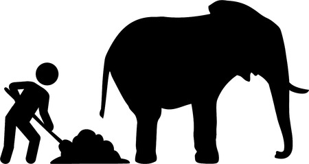 dung: Worker removed elephant dung