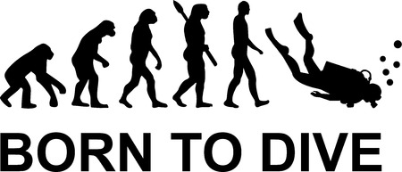Evolution geboren zu tauchen Standard-Bild - 40897539