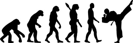 Karate Evolution 免版税图像 - 40897783