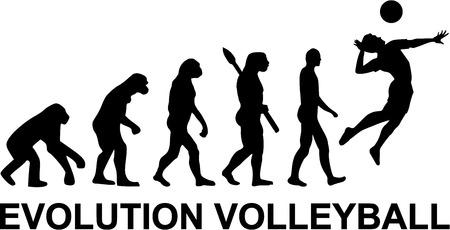Siatkówka Evolution Ilustracje wektorowe
