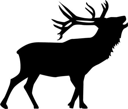 Belling Deer