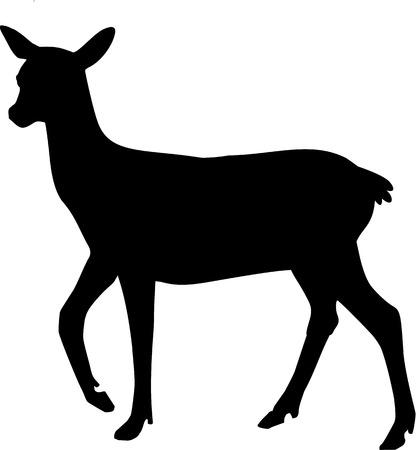 reindeer silhouette: Silhouette of Roe Deer