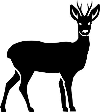 roe deer: Doe silhouette