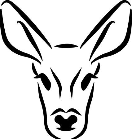 roe deer: Roe Deer head
