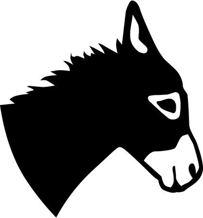 Real donkey head Illustration