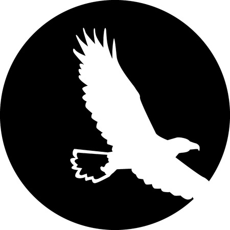 Bald Eagle in de voorkant van de maan