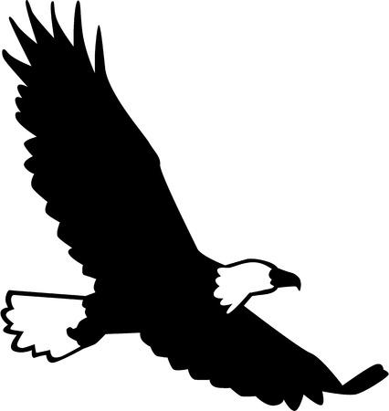 adler silhouette: Wei�kopfseeadler-Silhouette fliegen Illustration