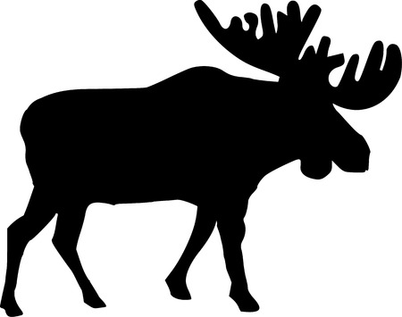Real moose silhouette