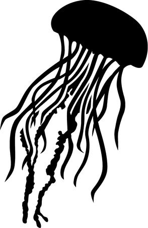 Jellyfish silhouette Imagens - 45248537