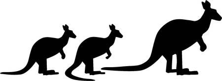 familiy: Kangaroo familiy