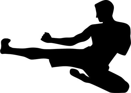 karate: Karate fighting kick