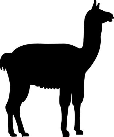 Lama silhouette Illustration