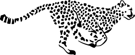 Running Leopard Gepard