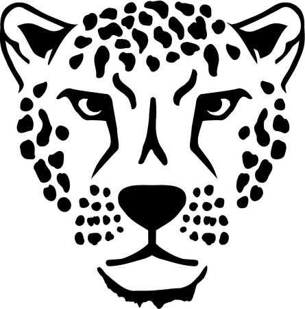 Leopard head Illustration