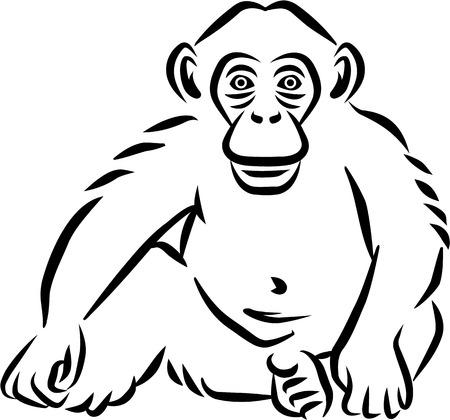 Sitting baby chimpanzee hand drawn Illustration