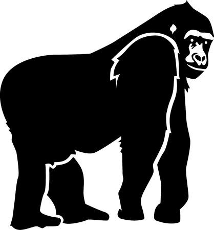 gorila: Silueta de gorila