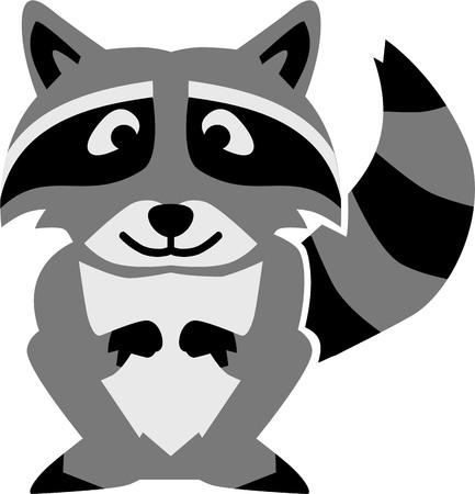 raccoon: Raccoon cartoon Illustration