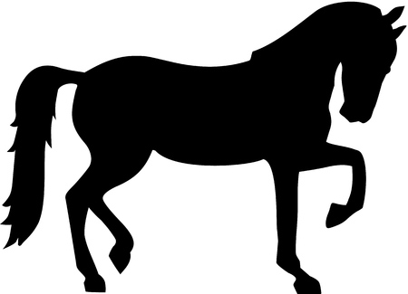 horse silhouette: Horse silhouette