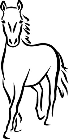 Horse caligraphy lines