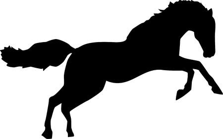 cavallo che salta: Cavallo selvaggio salto bronco Vettoriali