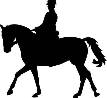 dressage: Dressage horse Rider