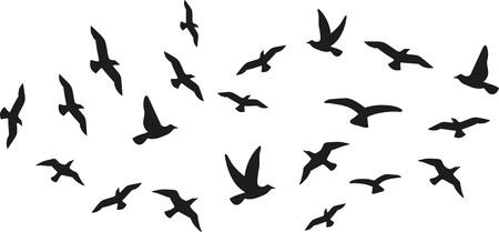 비행하는 조류의 무리