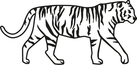 silueta tigre: Tigre con rayas Vectores
