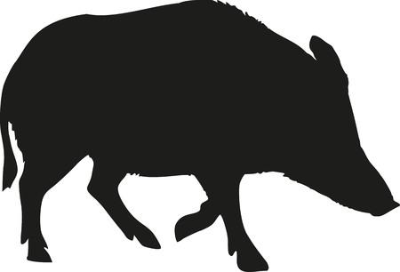 jabali: Silueta Cerdo salvaje Vectores