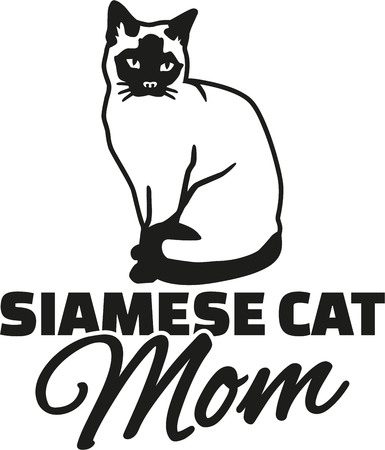 siamese cat: Siamese cat Mom