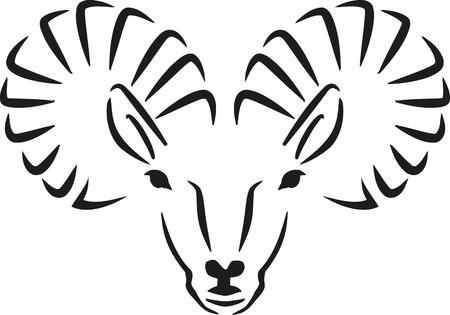 capra: Ibex capra head handdrawn Illustration