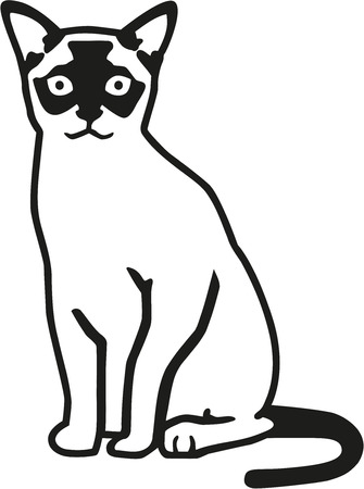 burmese: Burmese cat vector