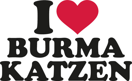 burmese: I love burmese cats german