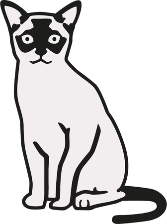 burmese: Burmese cat in two colors Illustration
